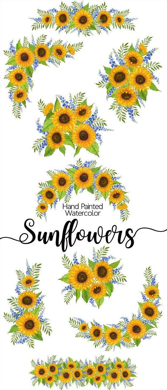 sunflowers clip art - watercolour