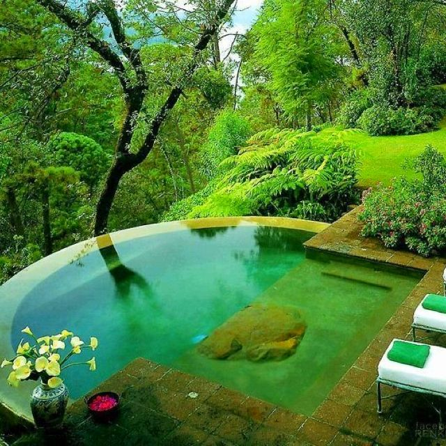 Small Pool Design, Backyard, Dream