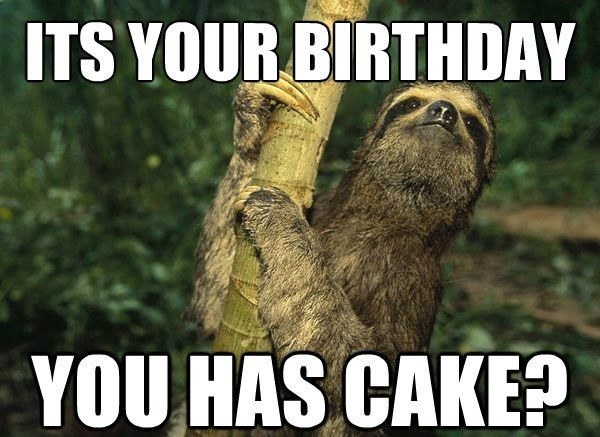 100 Ultimate Funny Happy Birthday Meme S Sloth Funny Happy