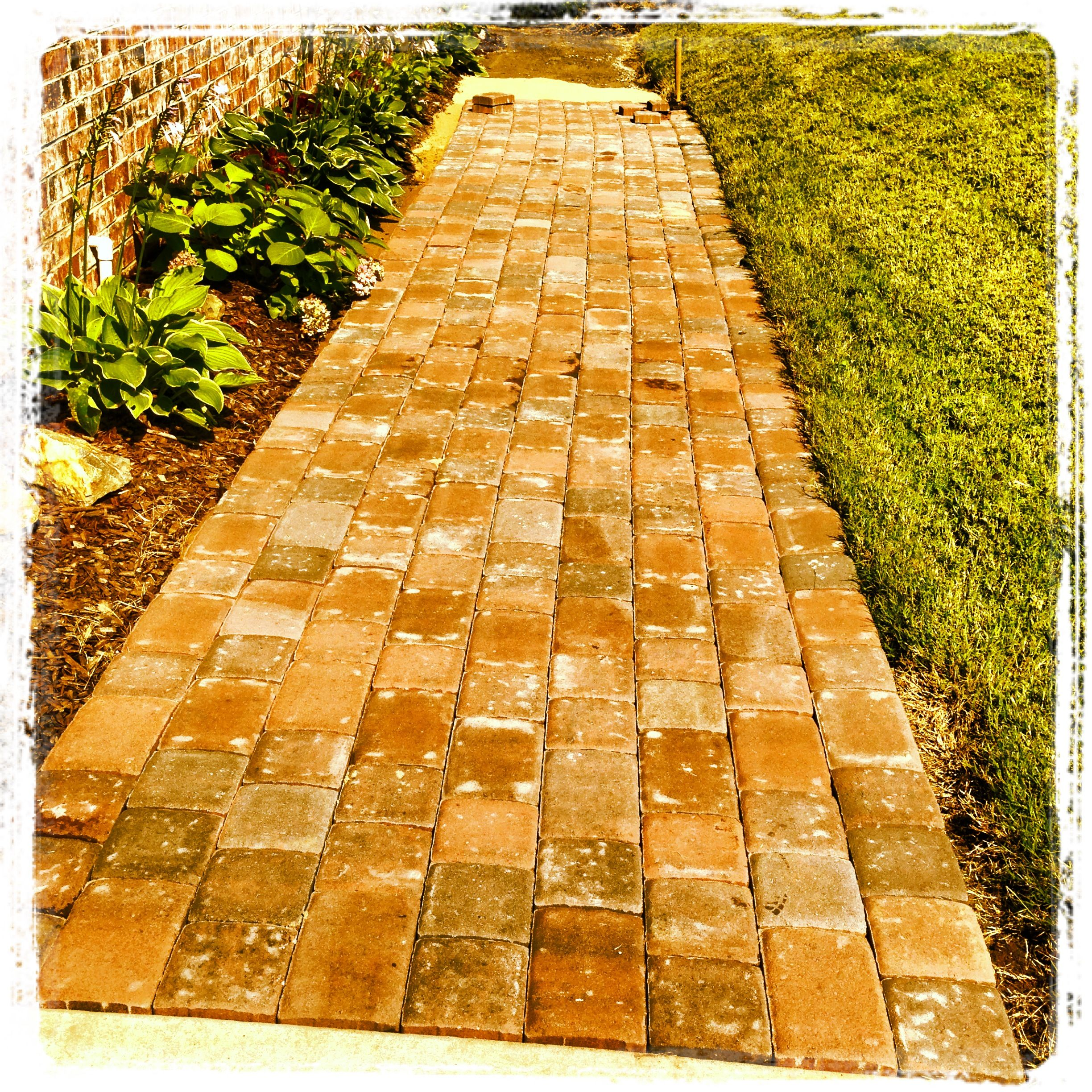 Pavers and landscape lighting make a shady muddy side yard