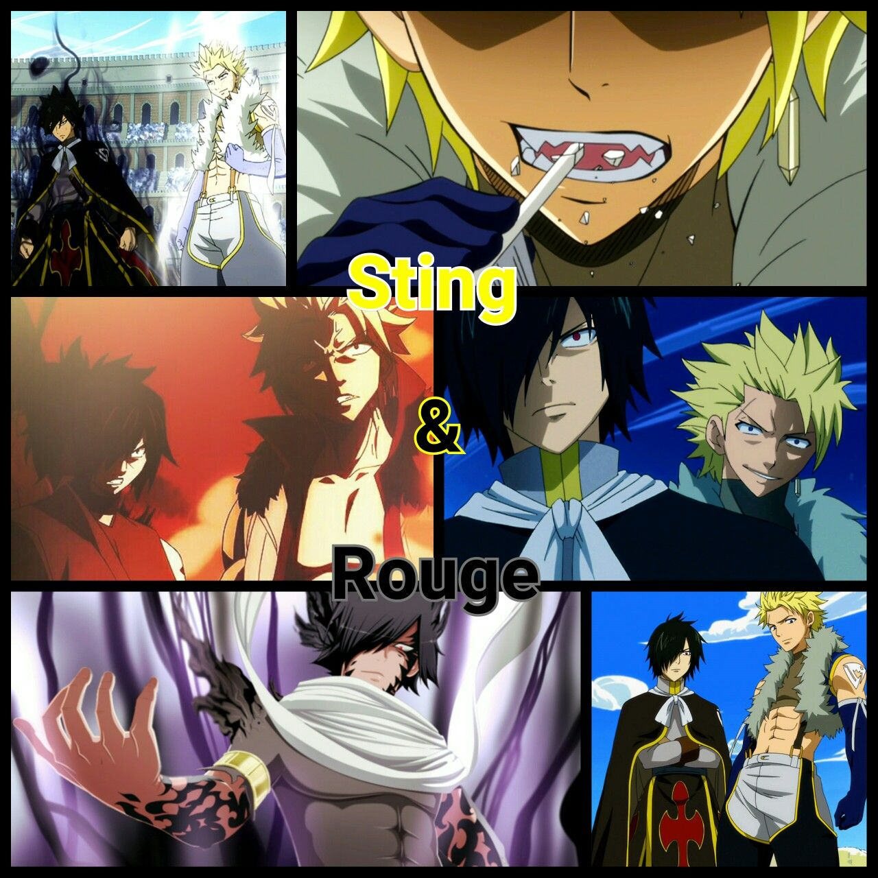 The Super Special Awesome Twin Dragon Slayers Sting And Rouge