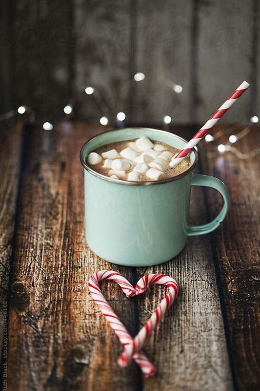 Holiday Season Hot Cocoa And Lots Of Love