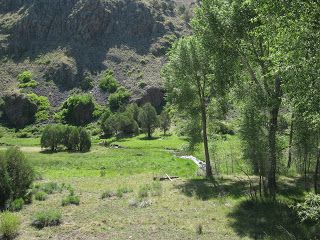 datil new mexico | Northern Wings: Birding New England & Beyond: New Mexico Trip Report ...