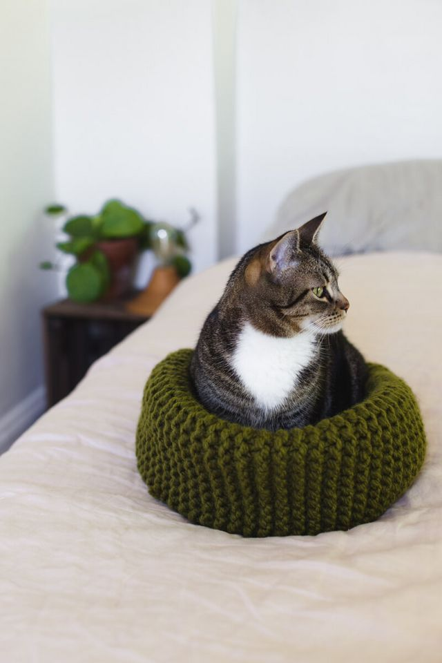 Make Your Own Knit Cat Bed (A Beautiful Mess) | Cat crafts, Patterns ...