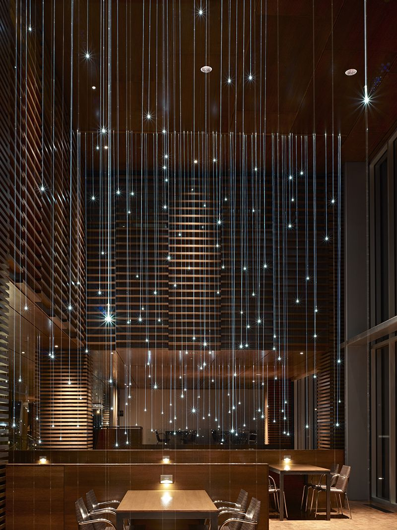 The 25 Best Fiber Optic Lighting Ideas On Pinterest Fiber Optic Ceiling S