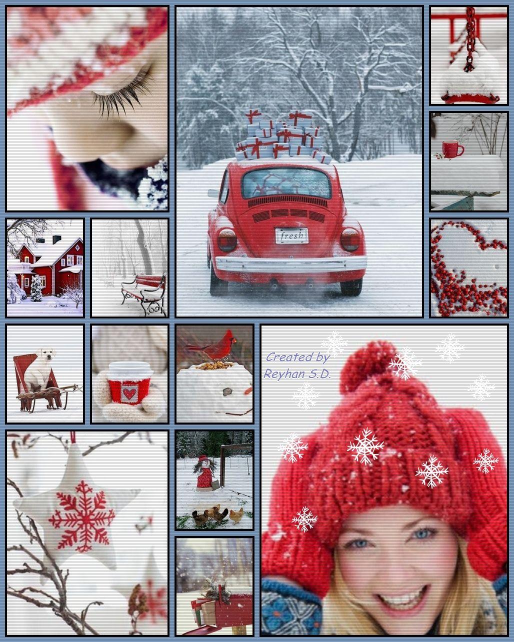 '' Winter Red  Whispers '' by Reyhan Seran Dursun