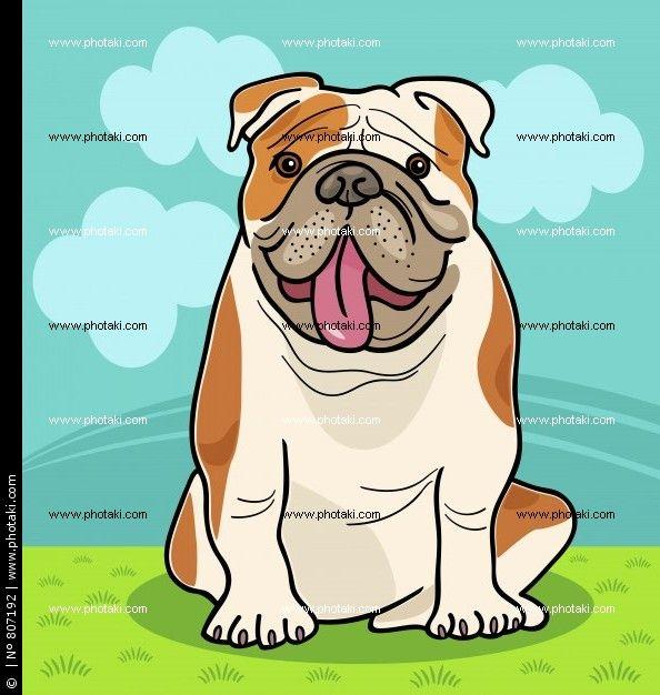 English Bulldog Cartoon Illustration With Images Bulldog Cartoon English Bulldog Dog Cats Illustration