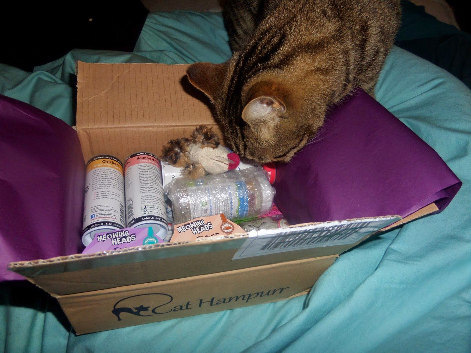 """Here is Oskar checking it out, He loves his surprise box every month"""
