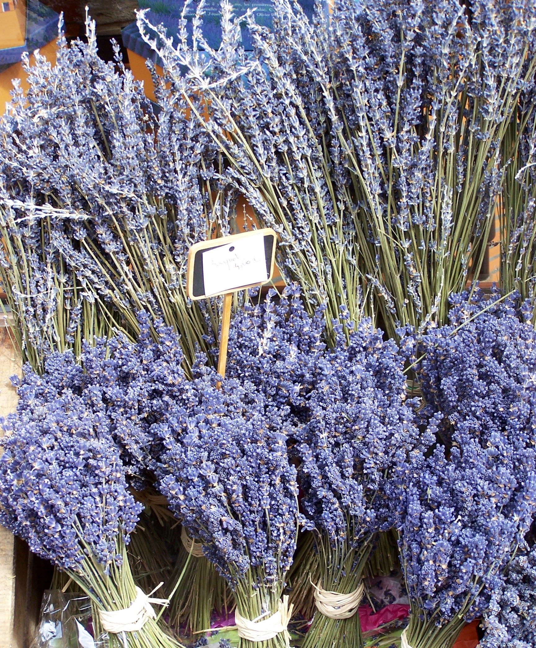Lavender In Front Of A L'Occitane En Provence In Provence