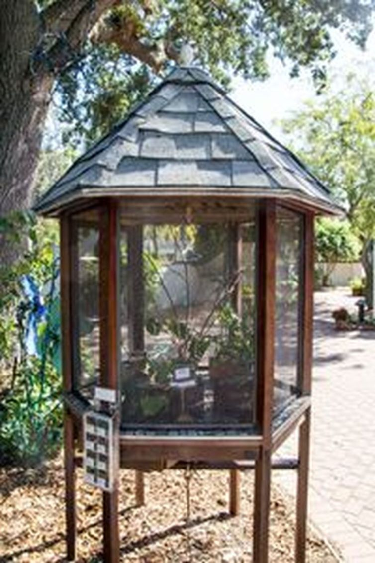 49 Inspiring Butterfly Garden Design Ideas Butterfly 640 x 480