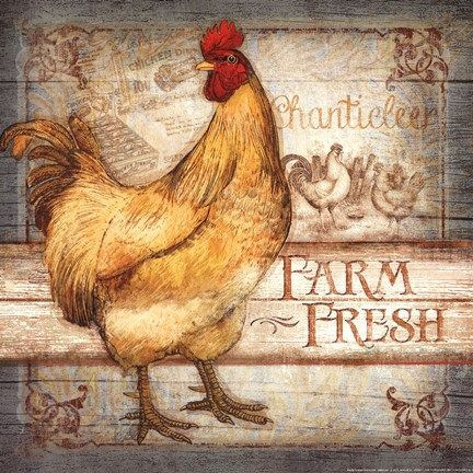 Farm Fresh Roostes (Mollie B)