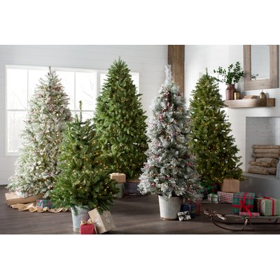 Lark Manor Snowy Frosted Green/White Fir Artificial Christmas Tree