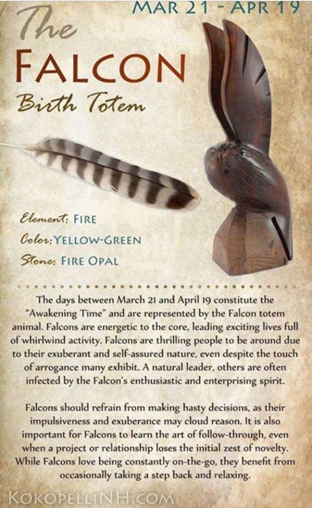 Falcon totem crystals and minerals pinterest totems the falcon birth totem nvjuhfo Gallery