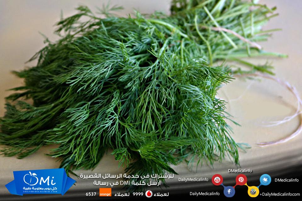 الشبت يقي من هشاشة العظام ويقوي العظام لأنه مصدر نباتي هام للكالسيوم لذلك ينصح بتناول الشبت بصفة مستمرة Herbs Healthy Dill