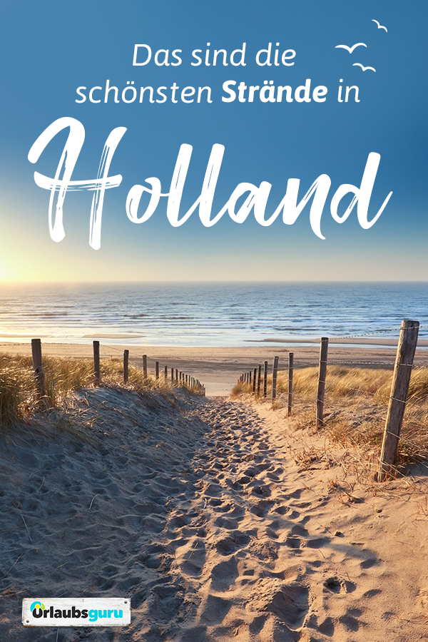 Strandurlaub in Holland ᐅ die schönsten Strände