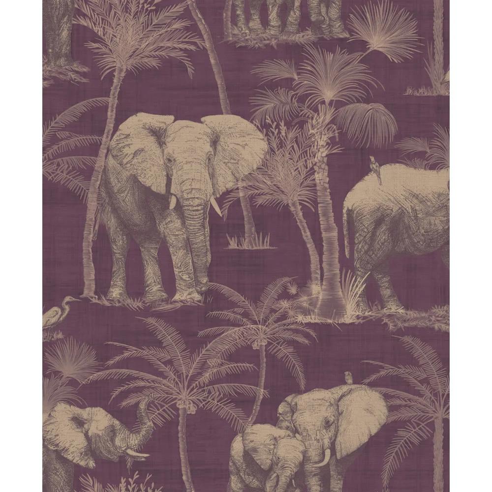 Animal, Bird & Butterfly Wallpaper