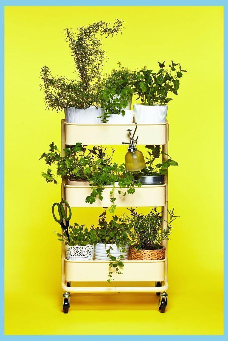 The IKEA RÅSKOG trolley as a herb garden Balcony herb garden Ikea