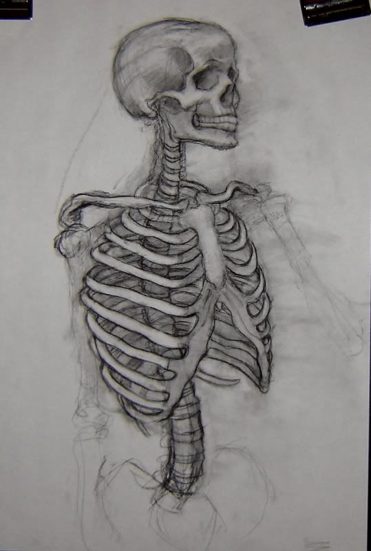Skeleton Drawing With Images Skeleton Art Drawing Skeleton