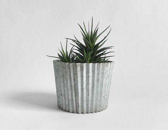 Vintage Galvanized Planter... to go with my 30 other not-vintage planters.
