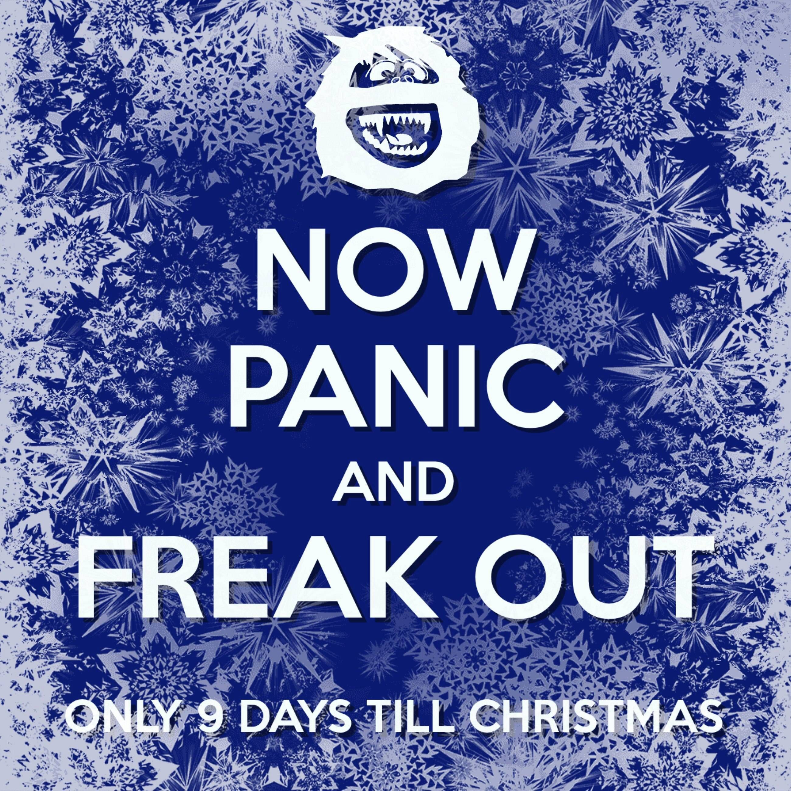 Image result for 9 days until christmas images
