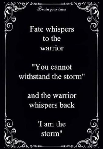 Das Schicksal Flustert Dem Krieger Zu Du Kannst Dem Sturm Nicht