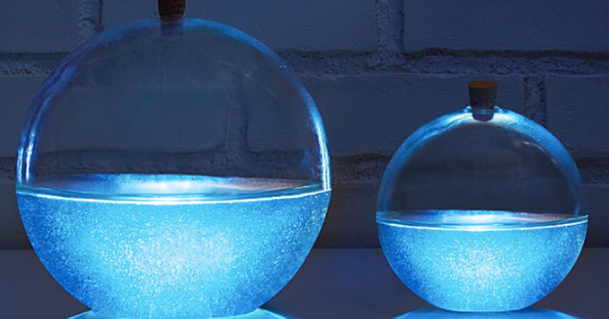 Blue Streak Daily On Bioluminescent Plankton Sea Monkeys Aquarium Gifts