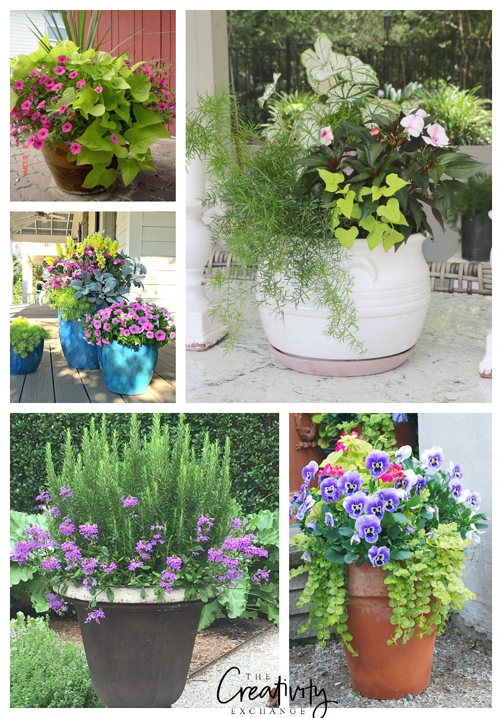 Creative Spring Garden Pots and Planters Container