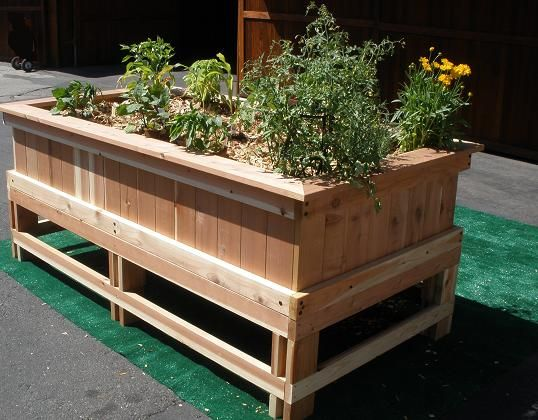 Planter Box, Would Like It Better With Corrugated Metal Sides