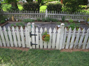 Vegetable garden fence made out of old pallets rip the for Decorative vegetable garden fencing