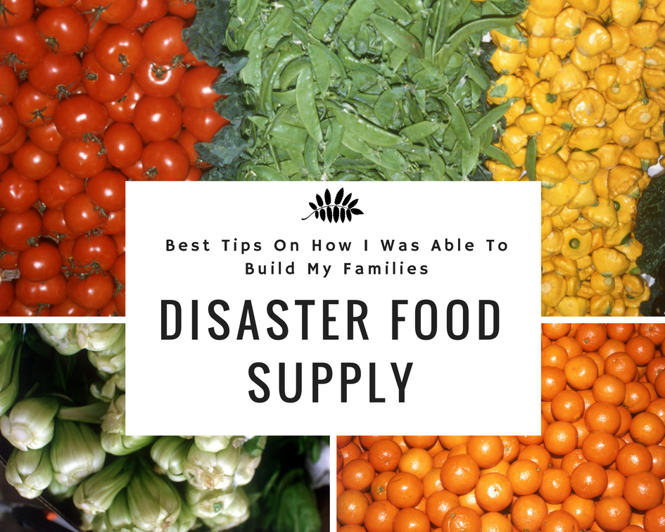 Best Tips on How I was Able To Build My Families Disaster