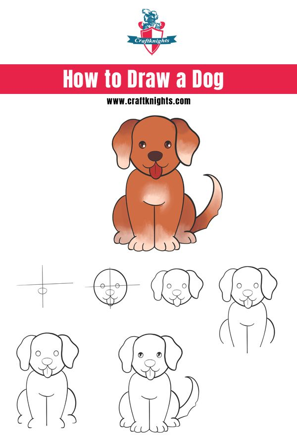 How to Draw a Dog || Easy to Follow Step by Step Guide