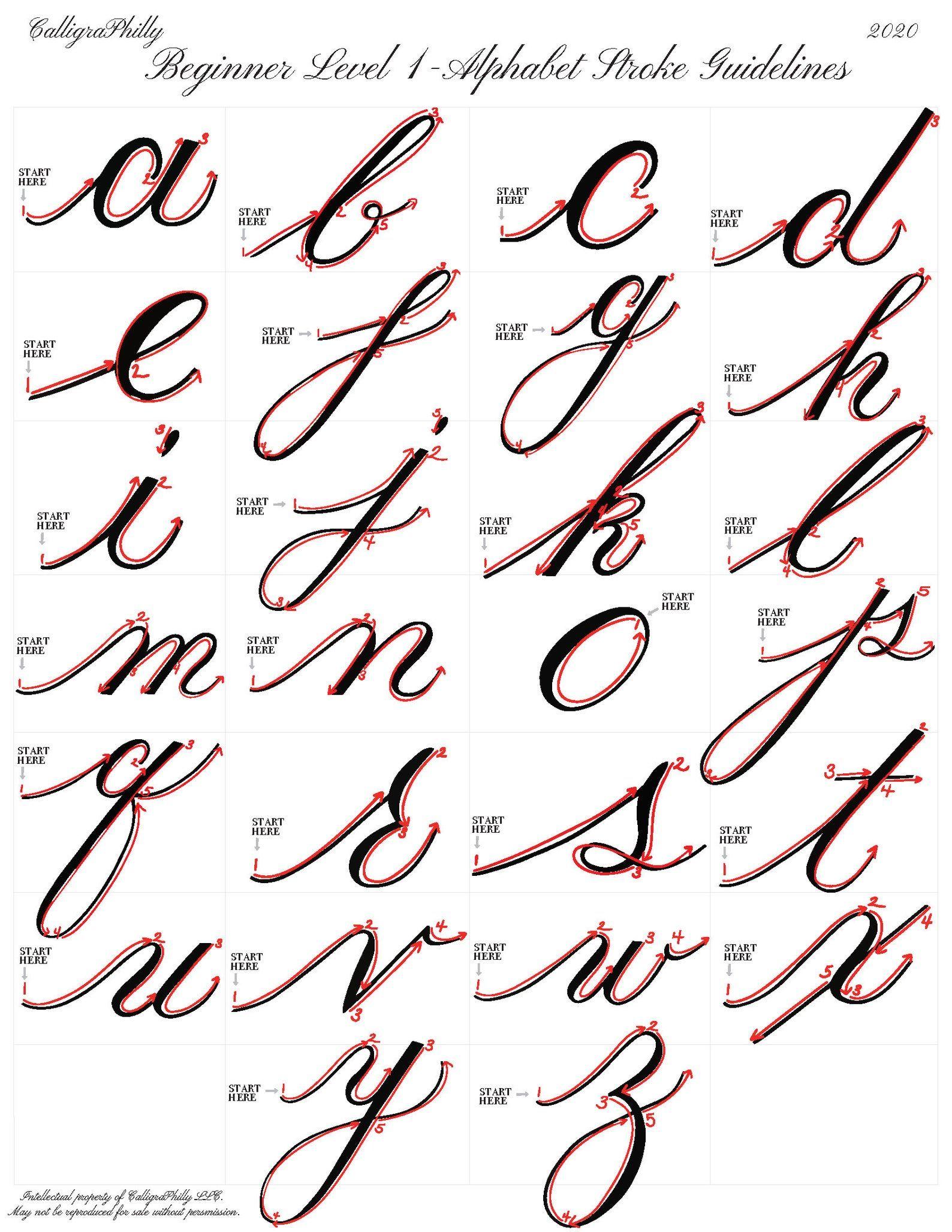 Beginner Level 1 Copperplate Calligraphy Alphabet
