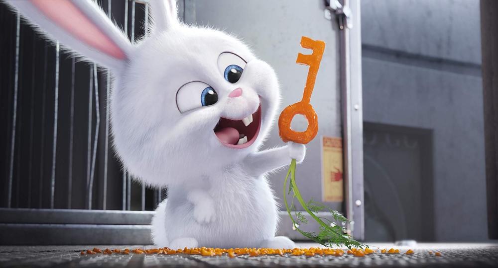 Evcil Hayvanlarin Gizli Yasami 2016 In 2020 Secret Life Of Pets Rabbit Wallpaper Cute Bunny Cartoon