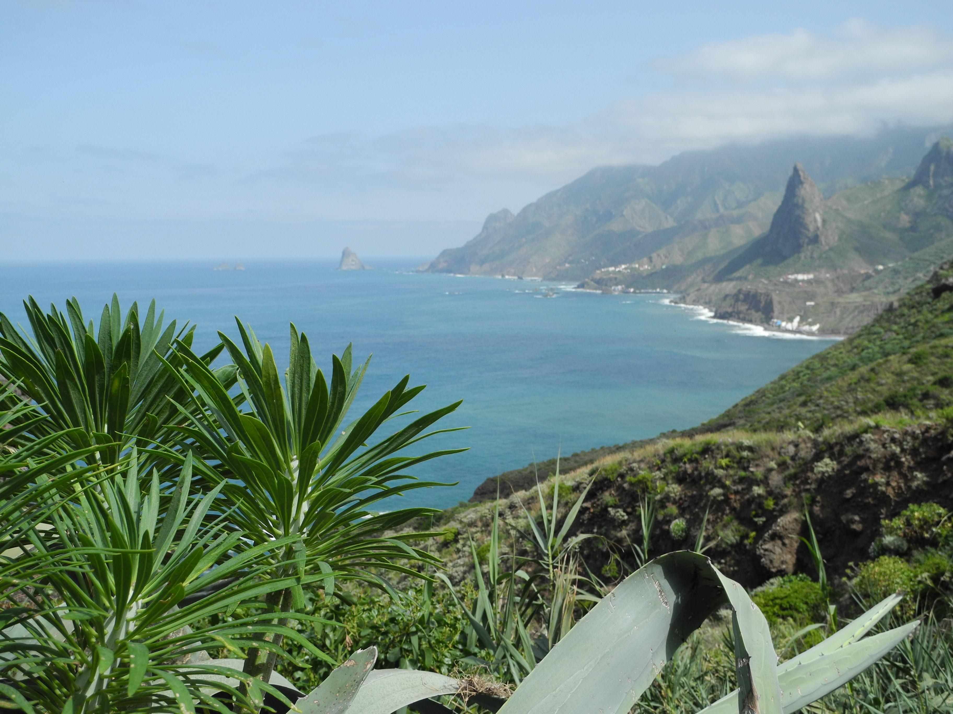 Wandern Auf Teneriffa Anaga Gebirge In 2021 Wandern Teneriffa Teneriffa Outdoor Abenteuer