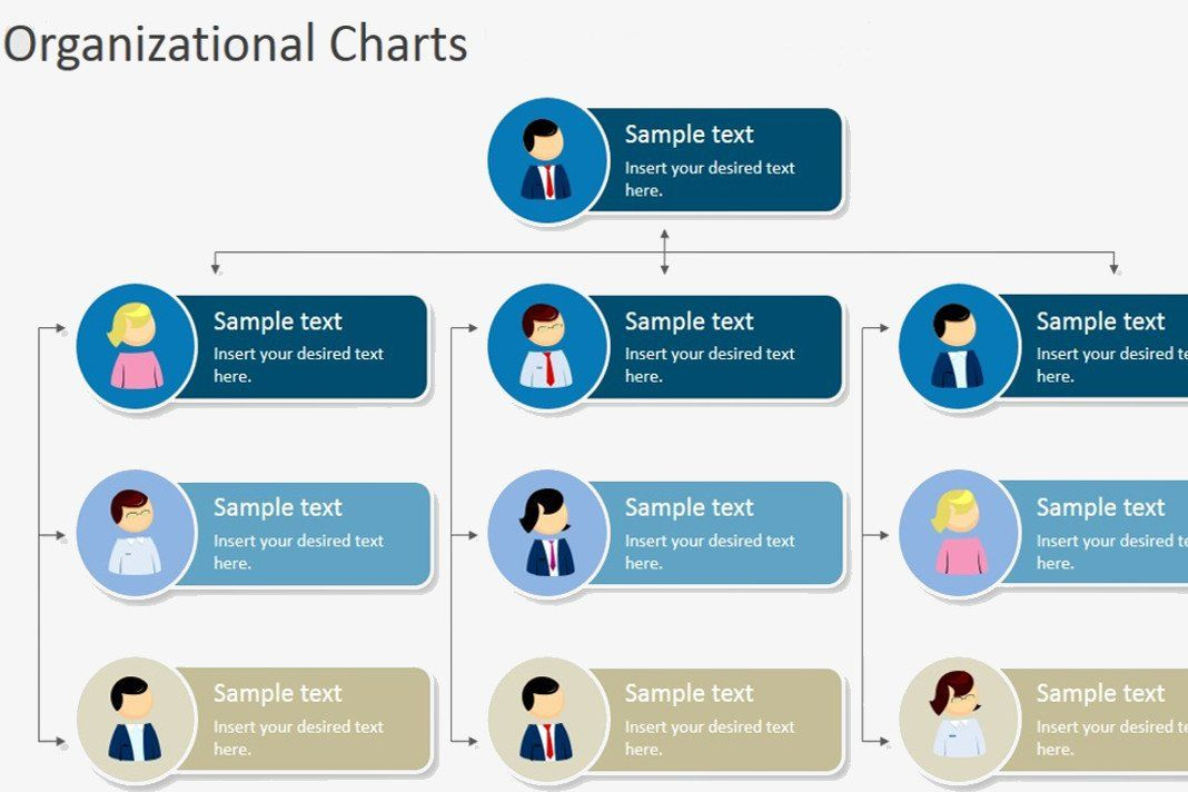 Sample Org Charts Templates Lovely Hierarchical Organizational Chart Template In 2020 Organizational Chart Organization Chart Org Chart