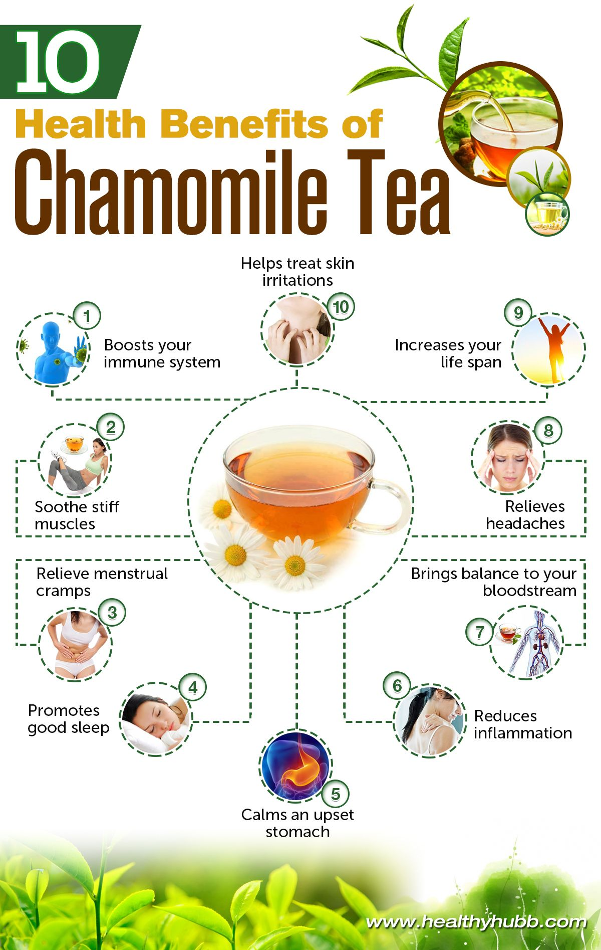 10 Health Benefits Of Drinking Chamomile Tea Healthy Food Nutrition I Grew Up On Chamomile Te Chamomile Tea Benefits Chamomile Tea Coconut Health Benefits