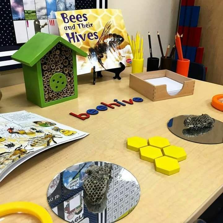 Honeypot Preschool: Pin By Sam Purcell On Honey, Honey