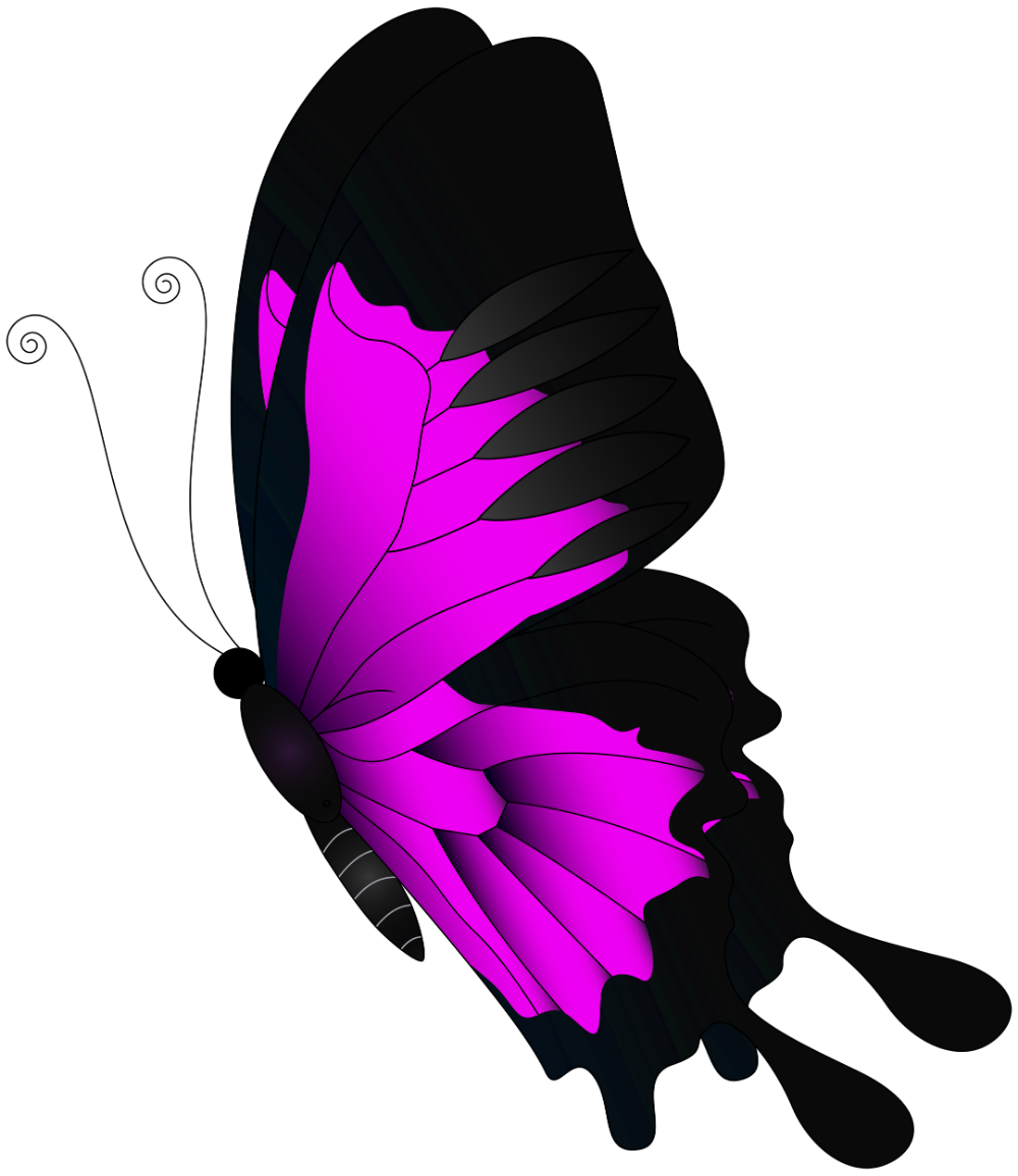 Pink Flying Butterfly Png Clip Art Gallery Yopriceville High Butterfly Art Drawing Clip Art Butterfly Clip Art