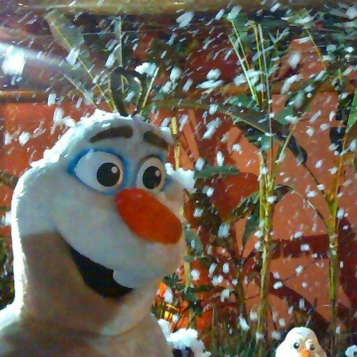 Aluguel máquina de neve artificial para eventos 11 947564076 whatsapp  www.analufesta.com.br