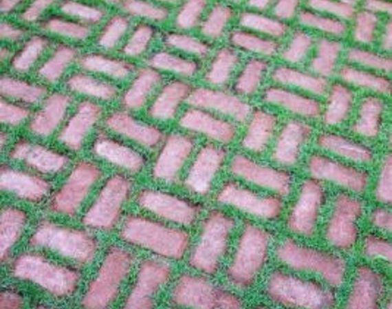 Brick Patio With Grass