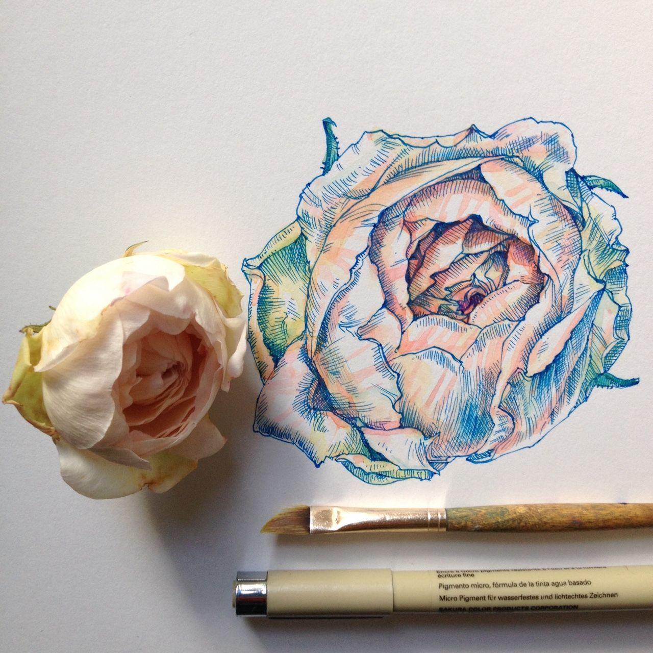 Pinterest nandeezy u 일러스트레이션 pinterest drawings