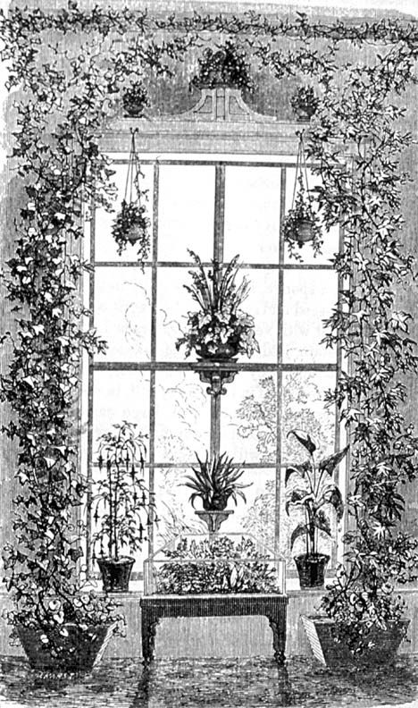 How To Decorate A Victorian House With Plants