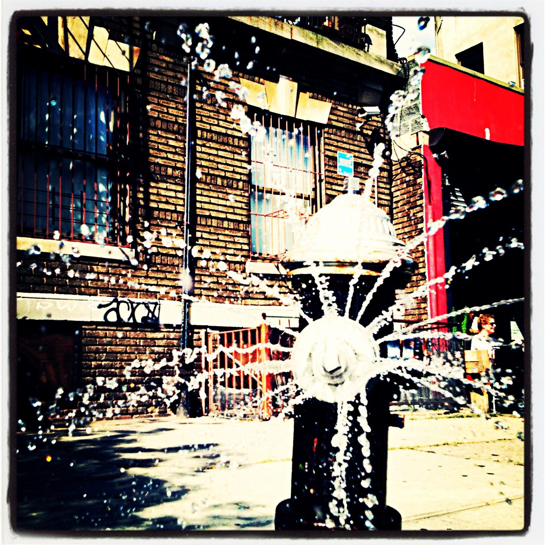 Brooklyn Summer