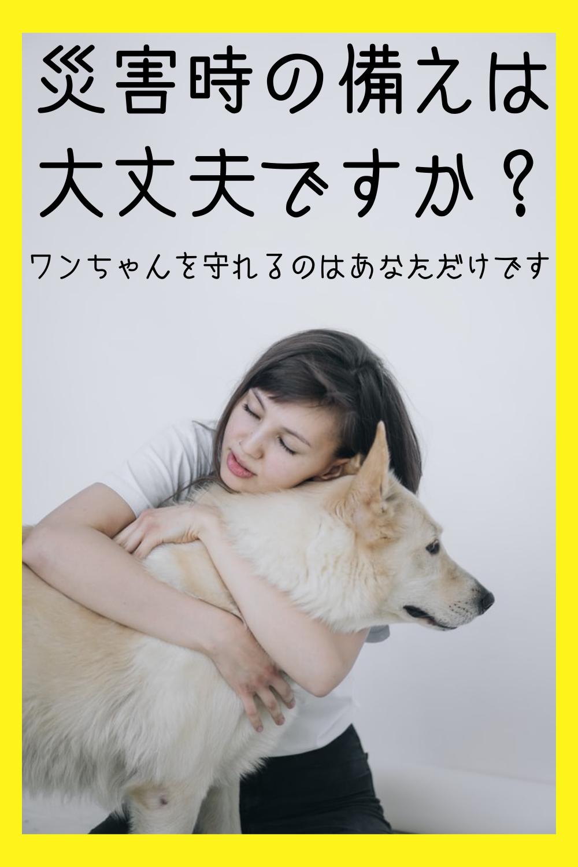 災害時に愛犬を守るためしっかり備よう 犬の名言 動物 癒し 動物
