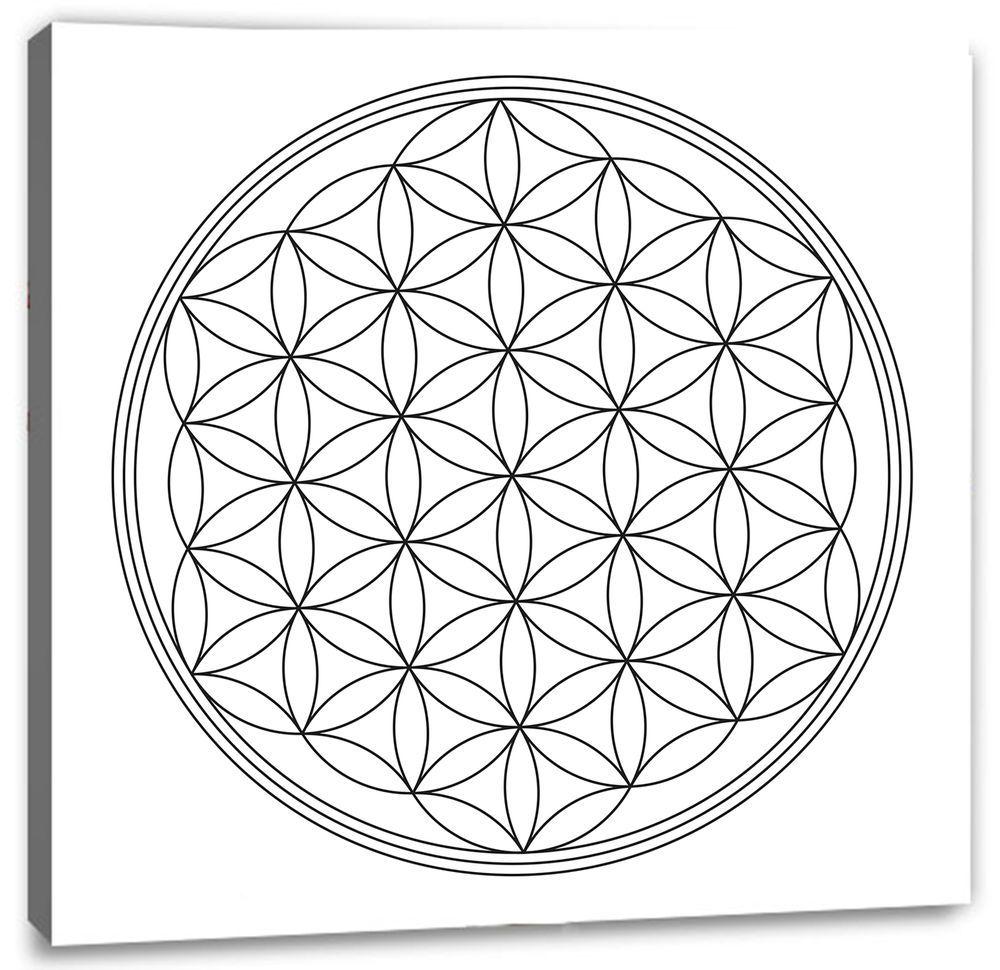 Blume Des Lebens Maltherapie Malvorlage Auf Keilrahmen Leinwandbild Blume Des Lebens Keilrahmen Leinwand Rahmen