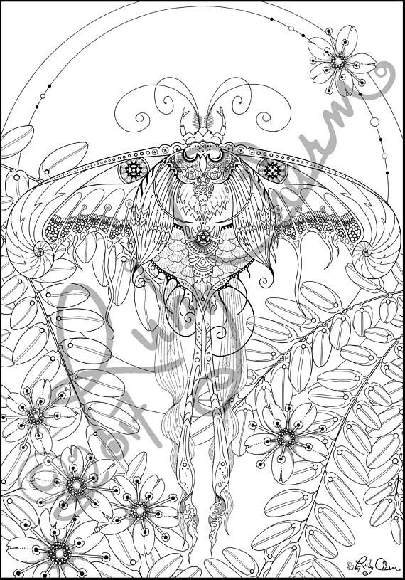 Pdf Luna Moth Downloadable Printable Adult Coloring Page Ruby