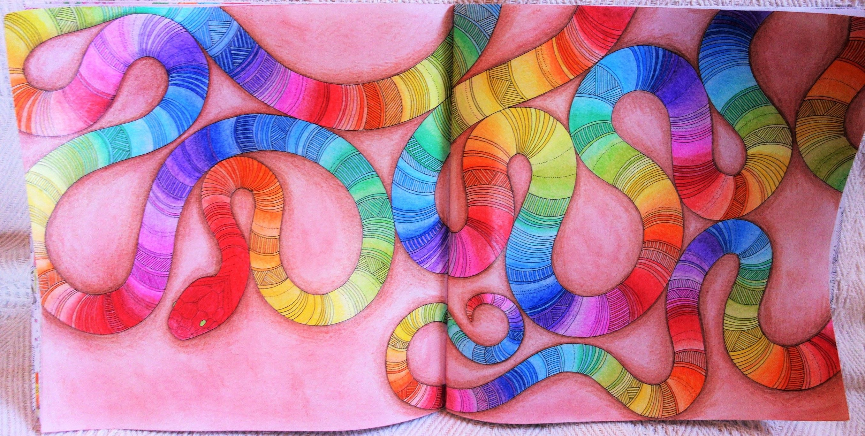 Millie Marottas Animal Kingdom Snake Coloured By Vanessa Greco Milliemarotta Animalkingdom Colouringbook