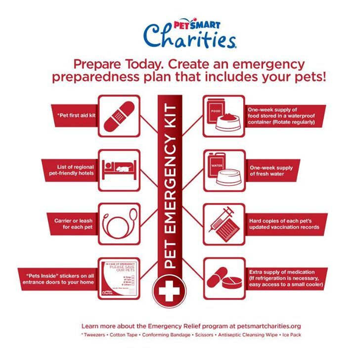 When planning for an emergency, don't forget to include your pets! Use this handy infographic from Pet Smart Charities to remember what needs to be done.