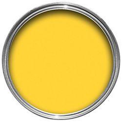 yellow satin £15.98 750ml b   dulux feature wall, interior