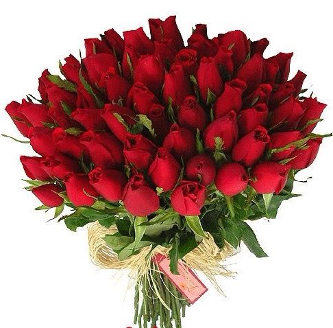 Bunch Of Red Roses Gardening Happy Birthday Quotes Birthday